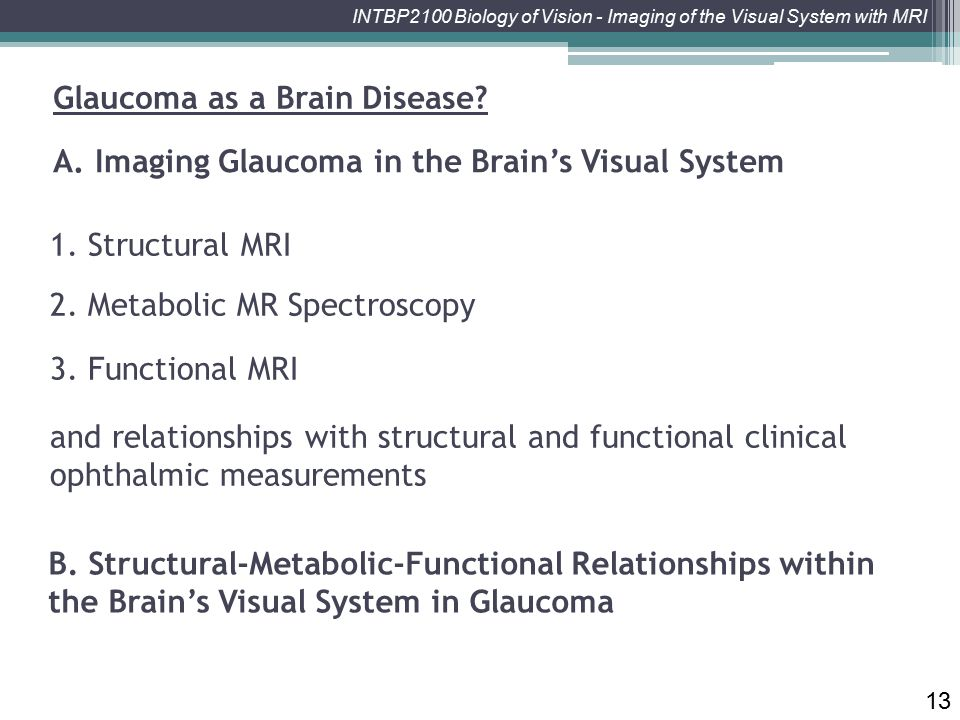 INTBP2100 Biology of Vision - Imaging of the Visual System with MRI 1. Structural MRI 13 2. Metabolic MR Spectroscopy 3. Functional MRI A. Imaging Gla