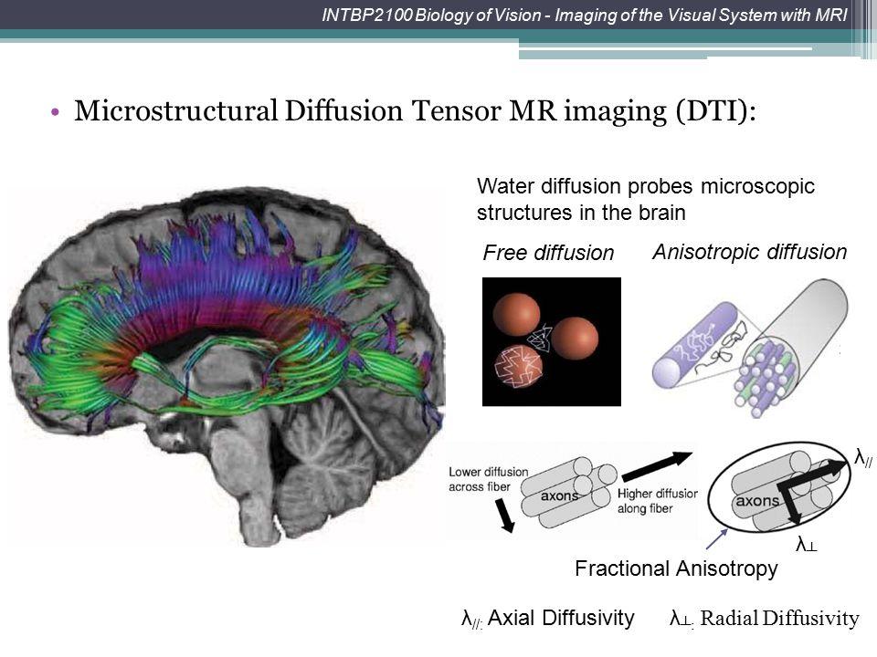 INTBP2100 Biology of Vision - Imaging of the Visual System with MRI axon Nerve fiberWhite matter fiber bundles Microstructural Diffusion Tensor MR ima