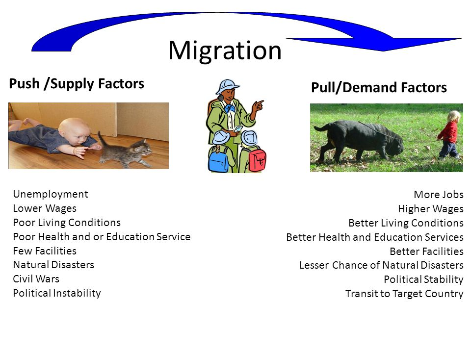 Migration Push /Supply Factors Pull/Demand Factors More Jobs Higher Wages Better Living Conditions Better Health and Education Services Better Facilities Lesser Chance of Natural Disasters Political Stability Transit to Target Country Unemployment Lower Wages Poor Living Conditions Poor Health and or Education Service Few Facilities Natural Disasters Civil Wars Political Instability