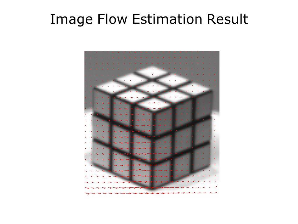 Image Flow Estimation Result