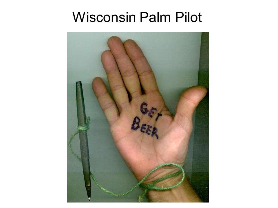 Wisconsin Palm Pilot