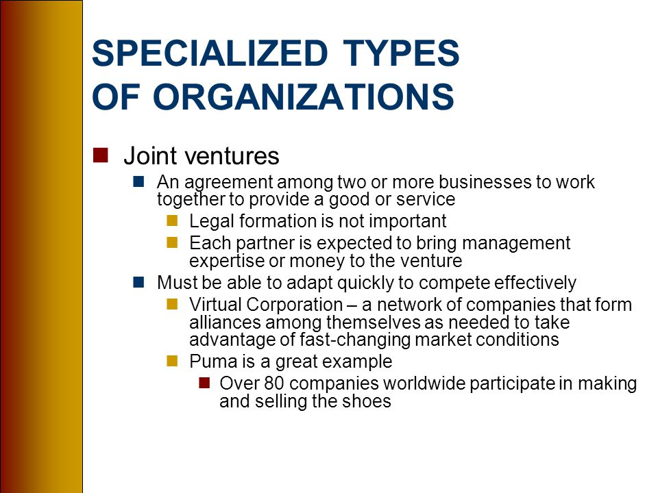 SPECIALIZED TYPES OF ORGANIZATIONS nJoint ventures nAn agreement among two or more businesses to work together to provide a good or service nLegal formation is not important nEach partner is expected to bring management expertise or money to the venture nMust be able to adapt quickly to compete effectively nVirtual Corporation – a network of companies that form alliances among themselves as needed to take advantage of fast-changing market conditions nPuma is a great example nOver 80 companies worldwide participate in making and selling the shoes