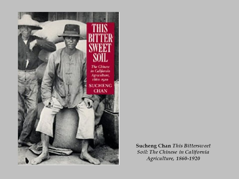 Sucheng Chan This Bittersweet Soil: The Chinese in California Agriculture, 1860-1920