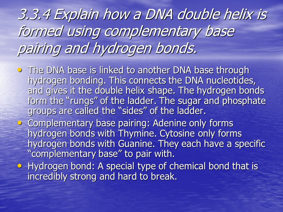 3.3.4 Explain how a DNA double helix is formed using complementary base pairing and hydrogen bonds. The DNA base is linked to another DNA base through