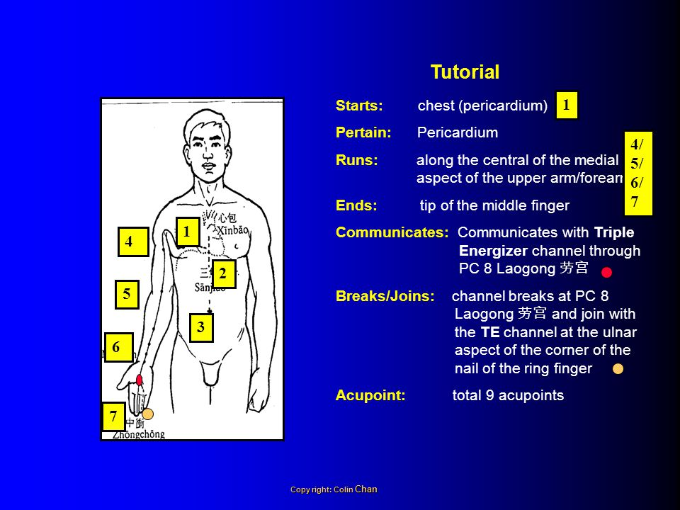 Starts: chest (pericardium) Pertain: Pericardium Runs: along the central of the medial aspect of the upper arm/forearm Ends: tip of the middle finger Communicates: Communicates with Triple Energizer channel through PC 8 Laogong 劳宫 Breaks/Joins: channel breaks at PC 8 Laogong 劳宫 and join with the TE channel at the ulnar aspect of the corner of the nail of the ring finger Acupoint: total 9 acupoints Tutorial 1 2 3 4 5 6 7 1 4/ 5/ 6/ 7 Copy right: Colin Chan