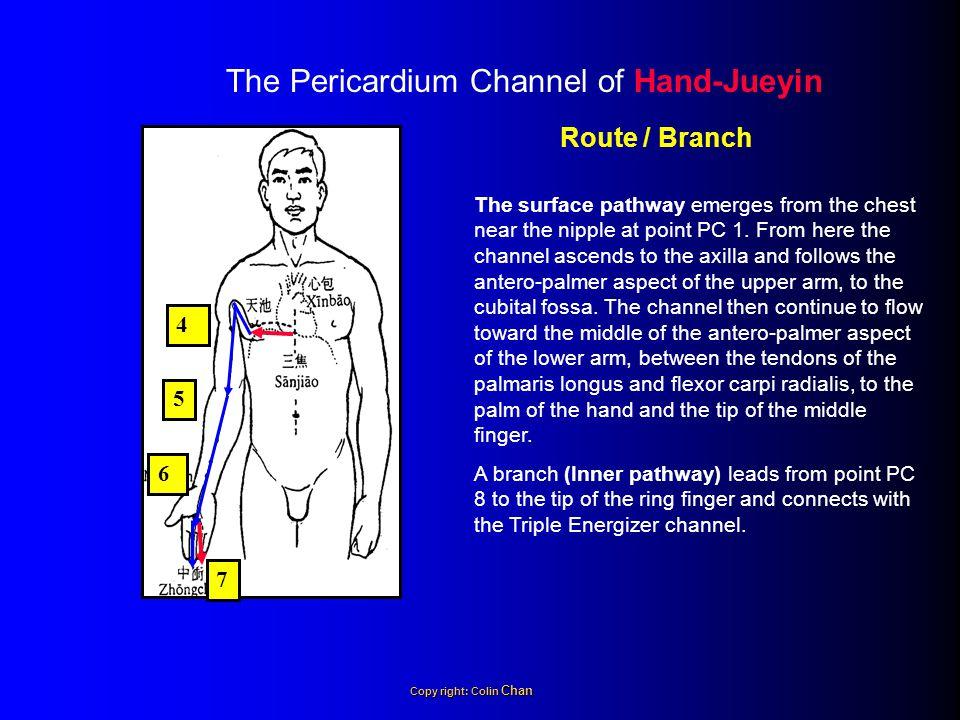 Principal Symptoms 1.Feverish sensation in the palm.