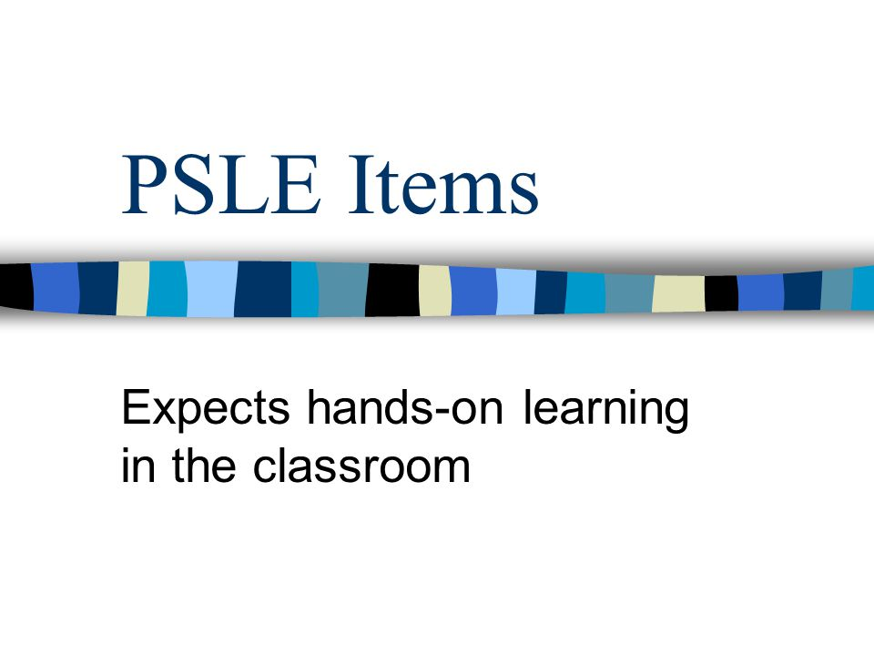 PSLE Items Expects hands-on learning in the classroom