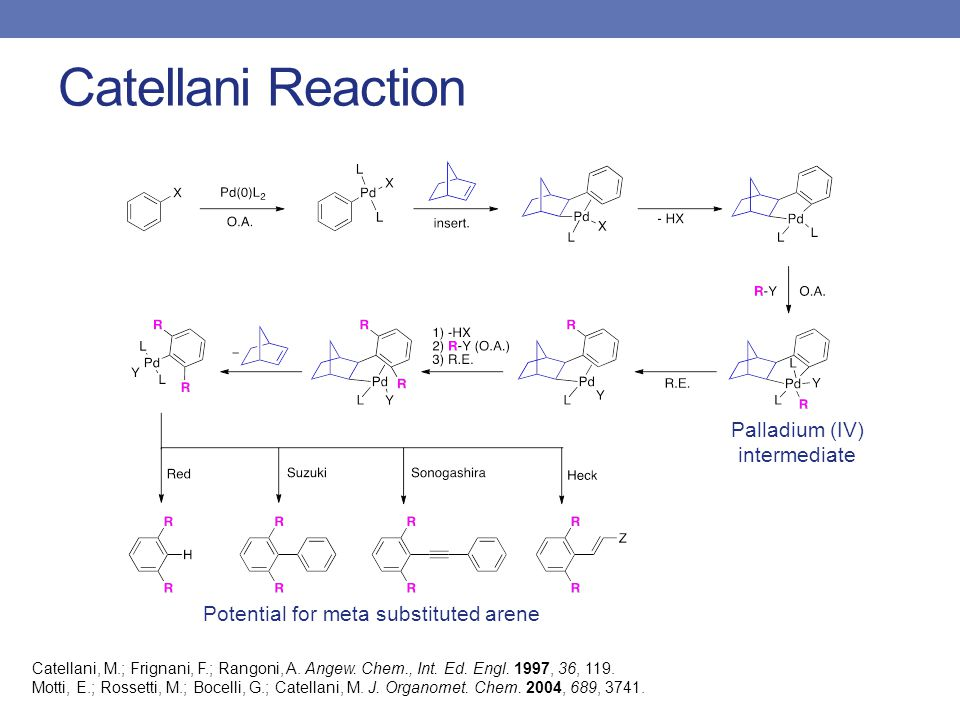 Catellani Reaction Catellani, M.; Frignani, F.; Rangoni, A.