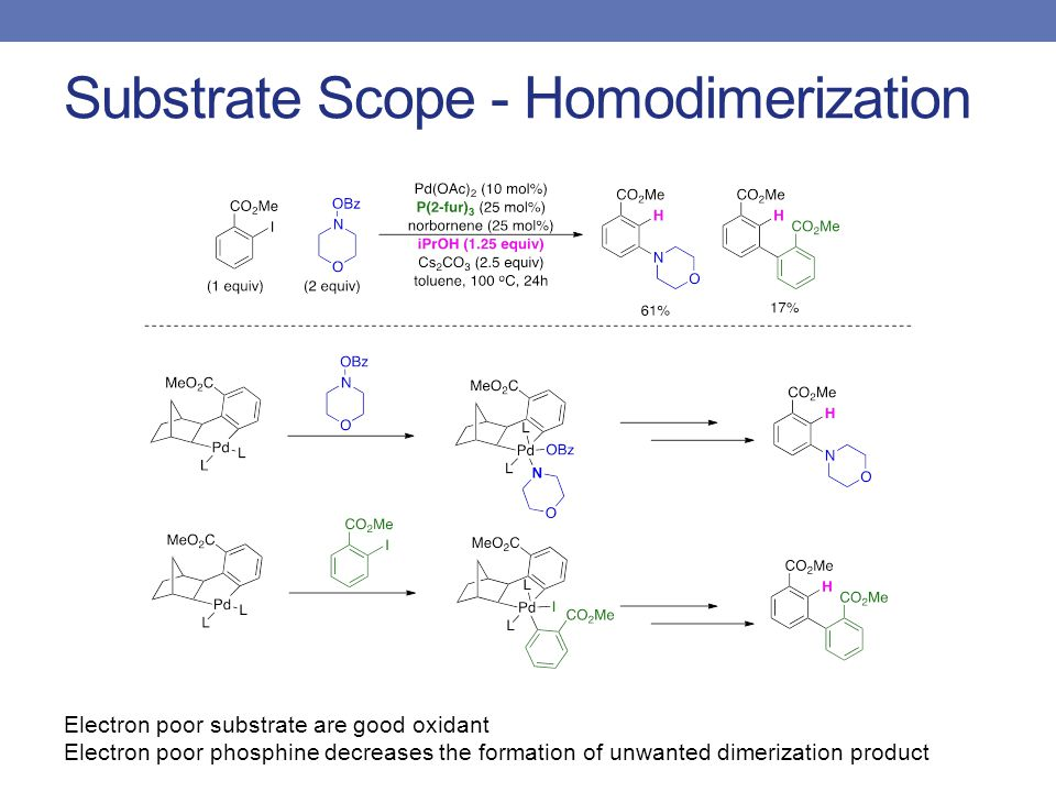 Substrate Scope - Homodimerization Electron poor substrate are good oxidant Electron poor phosphine decreases the formation of unwanted dimerization product