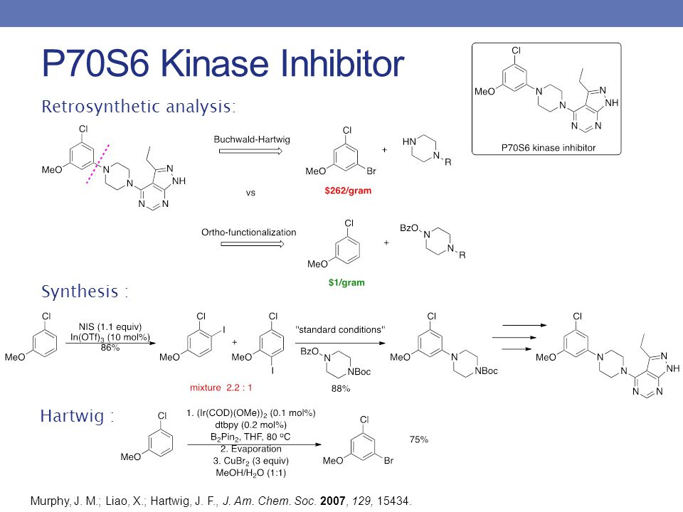 P70S6 Kinase Inhibitor Retrosynthetic analysis: Synthesis : Hartwig : Murphy, J. M.; Liao, X.; Hartwig, J. F., J. Am. Chem. Soc. 2007, 129, 15434.