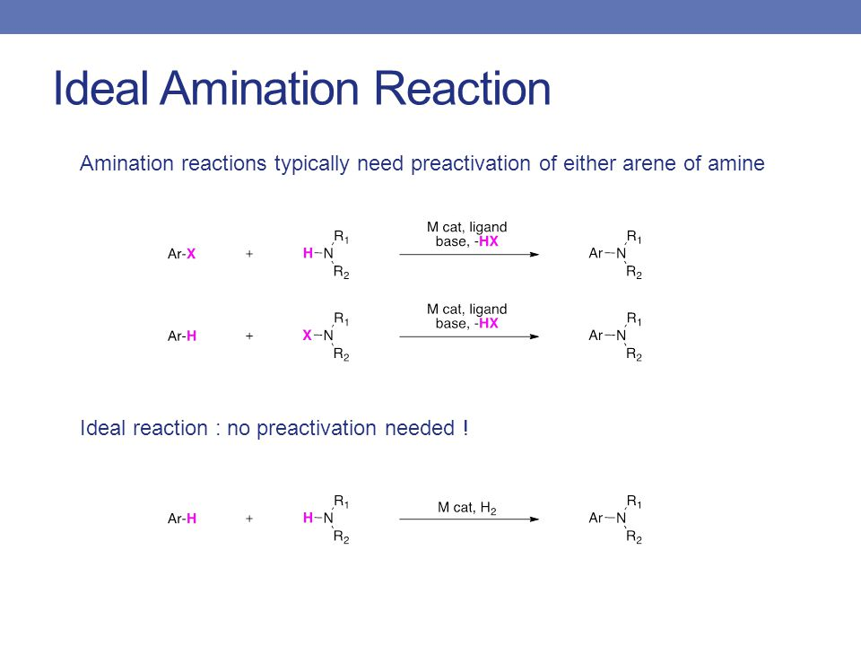 Ideal Amination Reaction Amination reactions typically need preactivation of either arene of amine Ideal reaction : no preactivation needed !