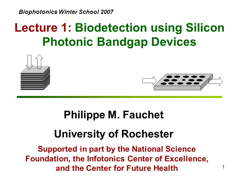 1 Lecture 1: Biodetection using Silicon Photonic Bandgap Devices Philippe M. Fauchet University of Rochester Supported in part by the National Science