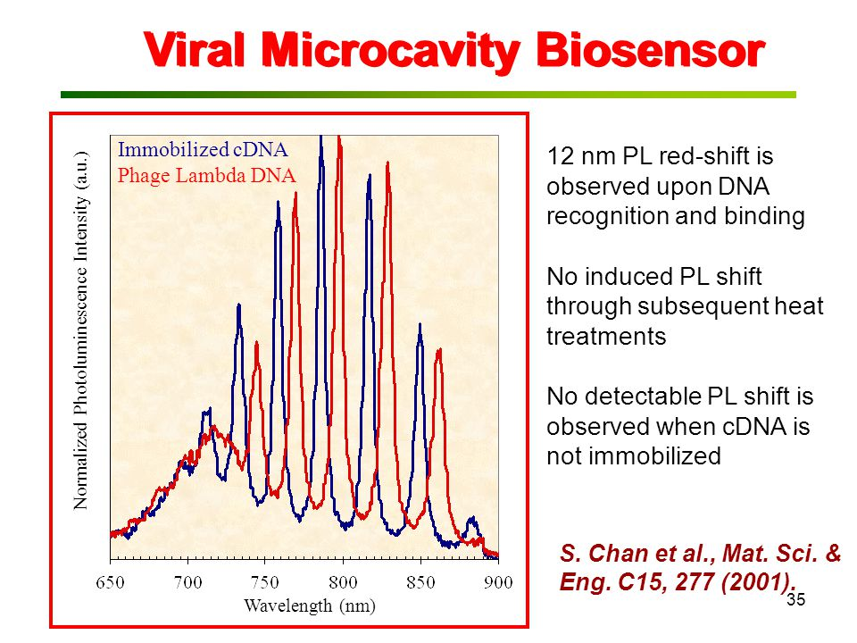 35 Viral Microcavity Biosensor 12 nm PL red-shift is observed upon DNA recognition and binding No induced PL shift through subsequent heat treatments