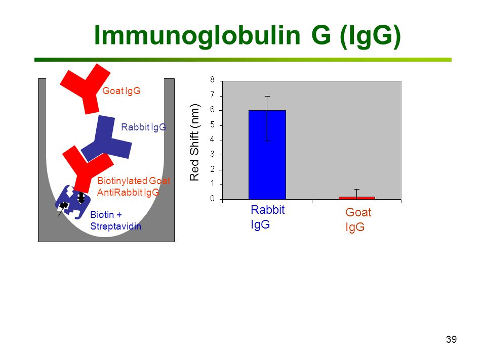 39 Immunoglobulin G (IgG) Biotinylated Goat AntiRabbit IgG Rabbit IgG Goat IgG Rabbit IgG Goat IgG Red Shift (nm) Biotin + Streptavidin