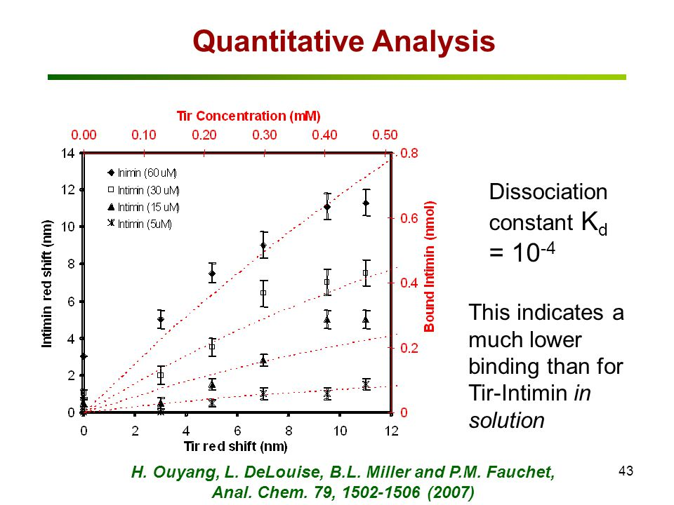 43 Quantitative Analysis Dissociation constant K d = 10 -4 This indicates a much lower binding than for Tir-Intimin in solution H. Ouyang, L. DeLouise