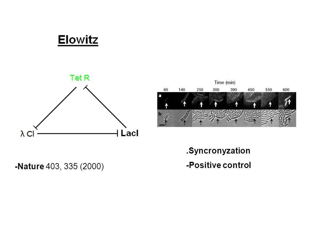 .Syncronyzation -Positive control