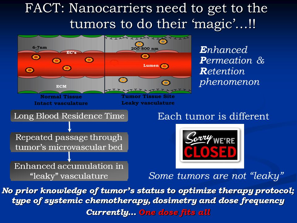 Long Blood Residence Time Repeated passage through tumor's microvascular bed Enhanced accumulation in leaky vasculature Some tumors are not leaky FACT: Nanocarriers need to get to the tumors to do their 'magic'…!.