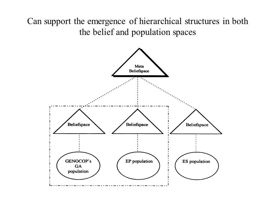Can support the emergence of hierarchical structures in both the belief and population spaces