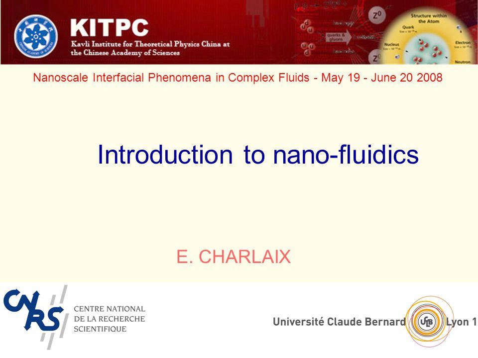 University of Lyon, France Nanoscale Interfacial Phenomena in Complex Fluids - May 19 - June 20 2008 E.