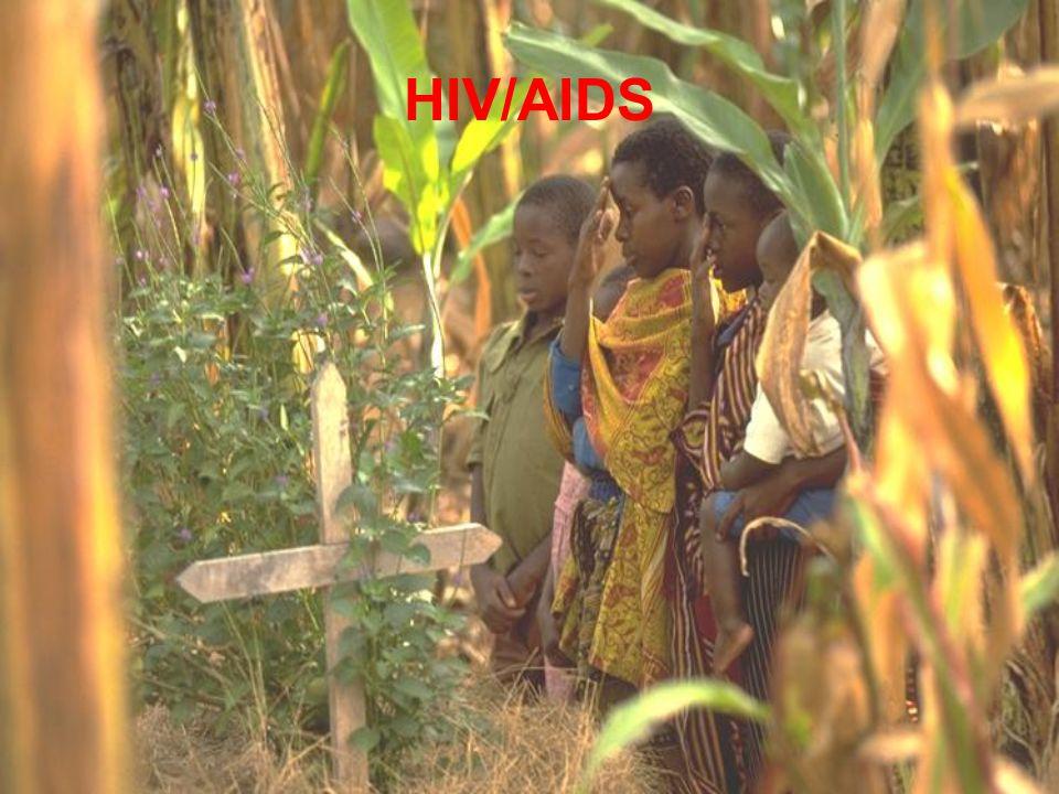 Phayao, Thailand HIV seroprevalence among 21 year old men199119921993199419951996 0 2 4 6 8 10 12 14 16 18 HIV Seroprevalence, % 200220001998