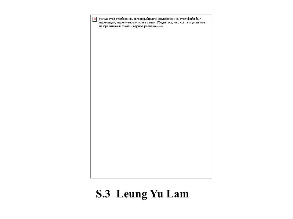 S.3 Leung Yu Lam