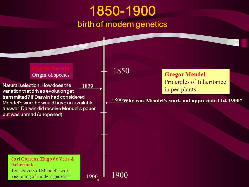 Why was Mendel's work not appreciated b4 1900? 1850-1900 birth of modern genetics Charles Darwin Origin of species Gregor Mendel Principles of Inherit