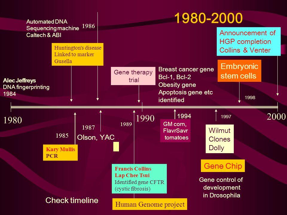 1980-2000 1980 1990 2000 Kary Mullis PCR 1985 Olson, YAC 1987 1989 Francis Collins Lap Chee Tsui Identified gene CFTR (cystic fibrosis) Human Genome p