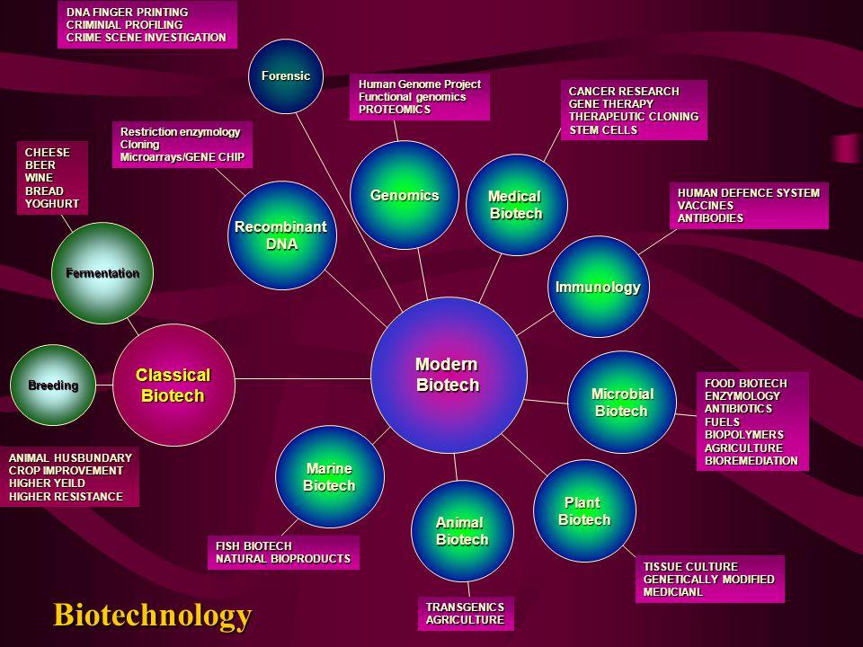 Biotechnology ModernBiotech ClassicalBiotech Genomics RecombinantDNA MicrobialBiotech PlantBiotech AnimalBiotech MarineBiotech Immunology MedicalBiote