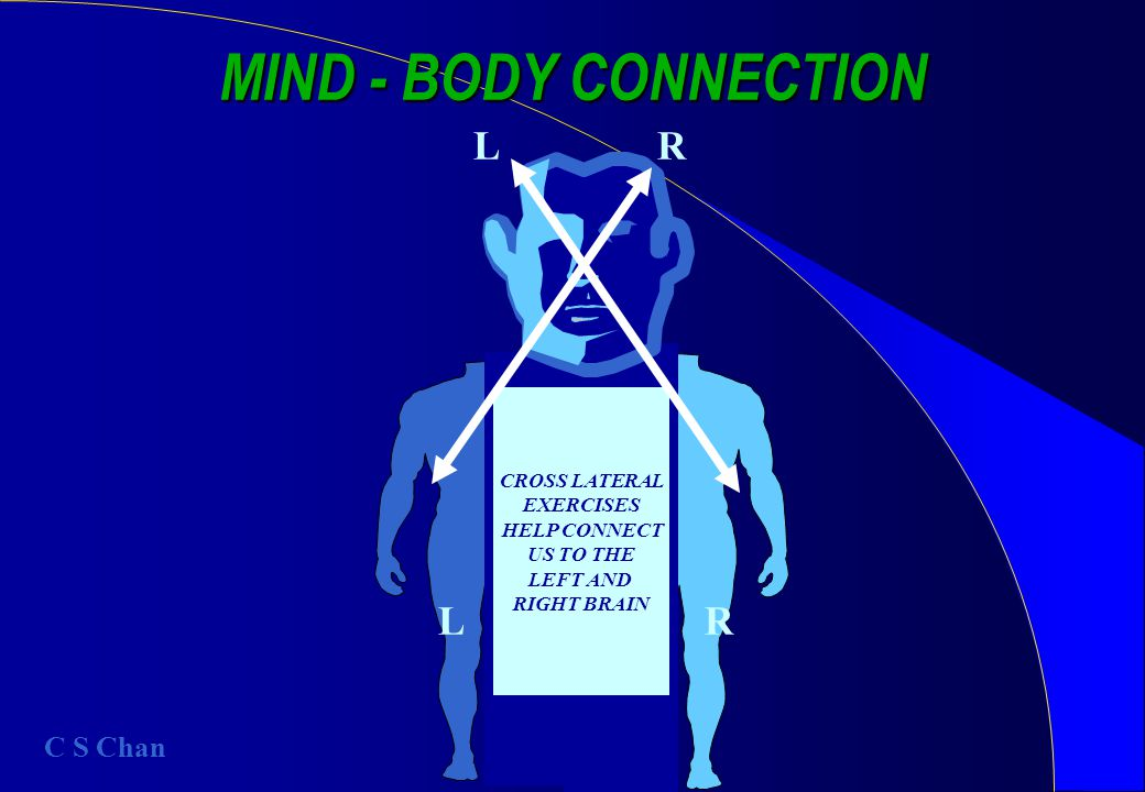 CROSS LATERAL EXERCISES HELP CONNECT US TO THE LEFT AND RIGHT BRAIN MIND - BODY CONNECTION LR RL C S Chan