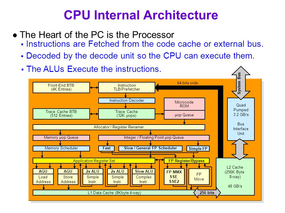 CPU Internal Architecture  Instructions are Fetched from the code cache or external bus.