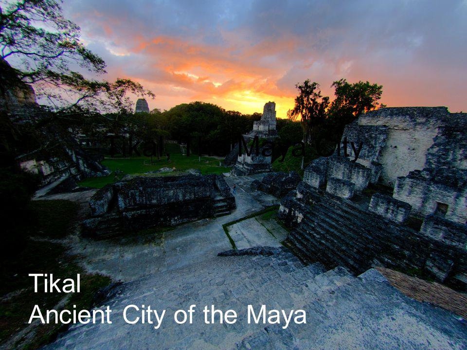 Tikal Ancient City of the Maya Tikal, The Maya City