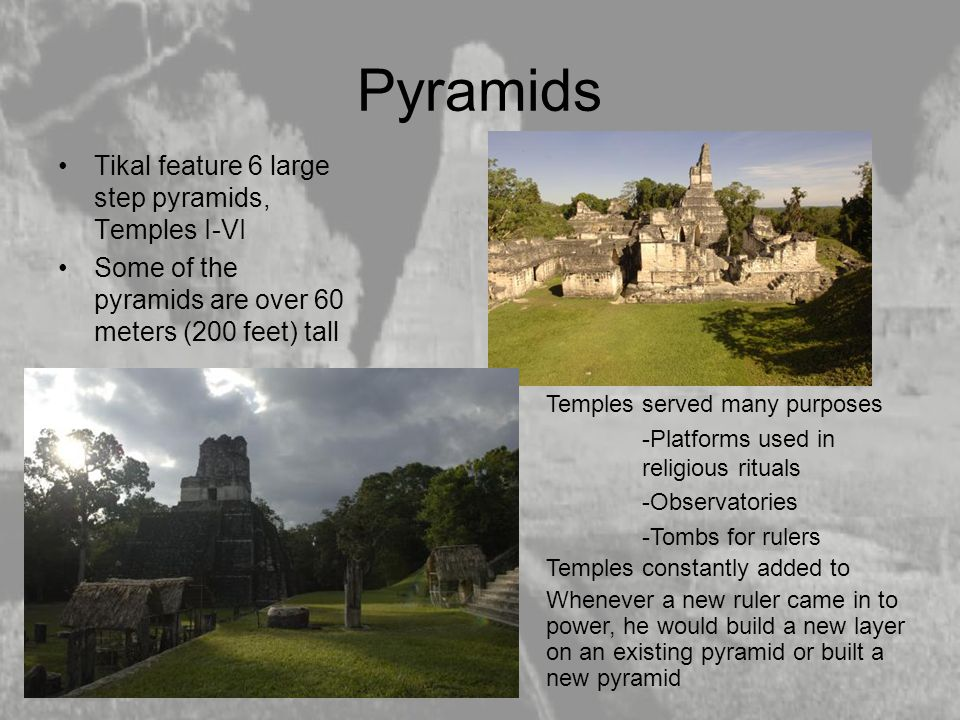 Pyramids Tikal feature 6 large step pyramids, Temples I-VI Some of the pyramids are over 60 meters (200 feet) tall Temples served many purposes -Platf