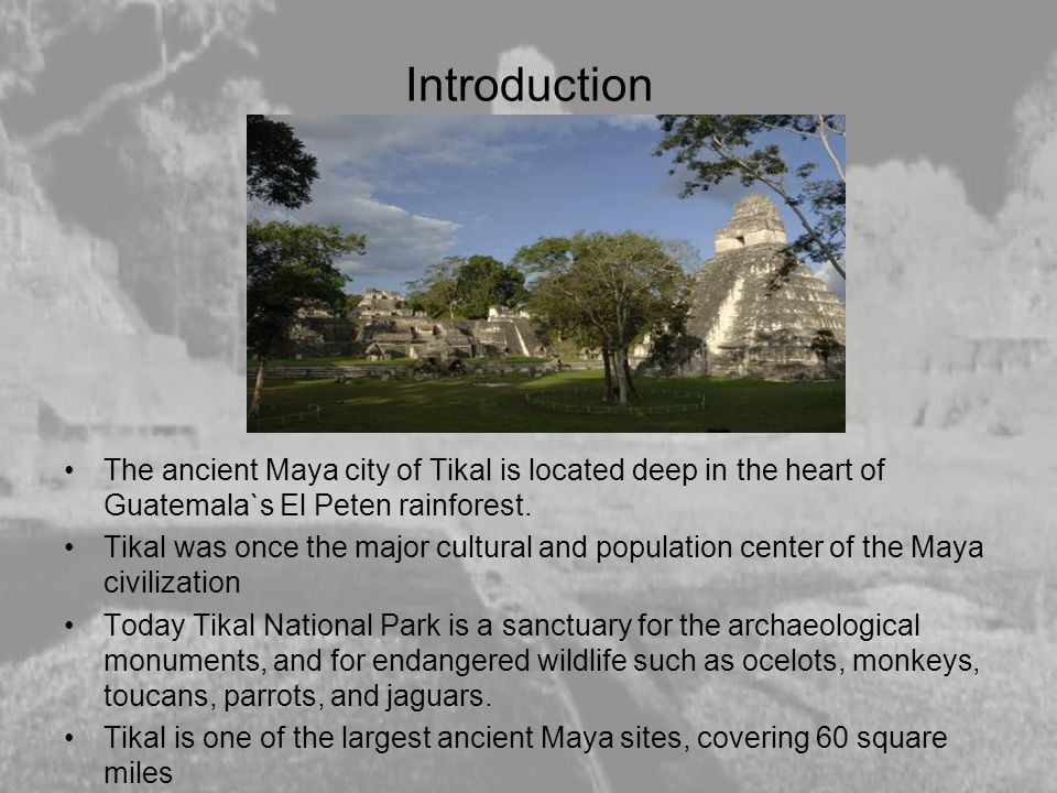 Introduction The ancient Maya city of Tikal is located deep in the heart of Guatemala`s El Peten rainforest. Tikal was once the major cultural and pop