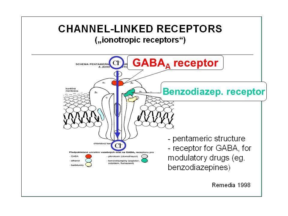 GABA A receptor Benzodiazep. receptor