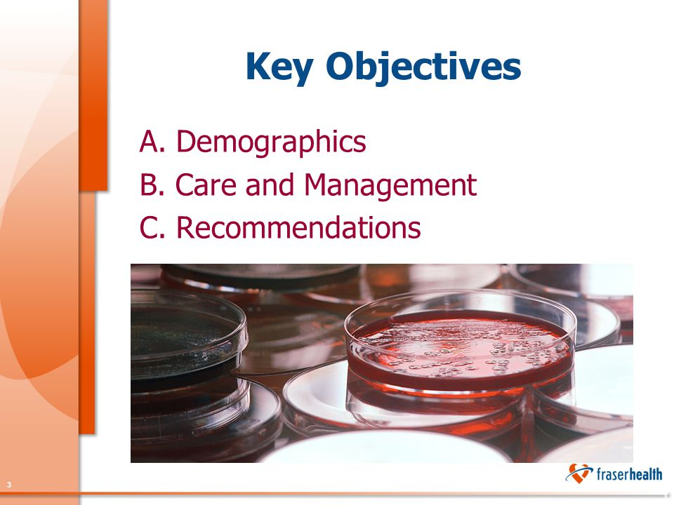 3 3 Key Objectives A. Demographics B. Care and Management C. Recommendations