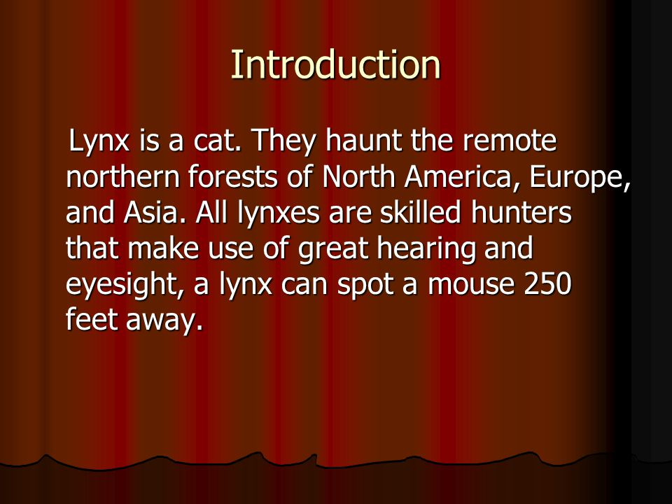 Introduction Lynx is a cat.