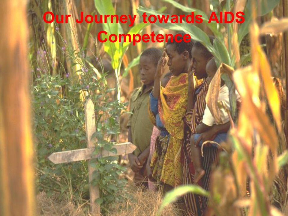 The Constellation for AIDS Competence  Connecting local responses around the world  Committed to the goal of AIDS Competence and  Committed to HCD as a strategy  Founded on December 8, 2004