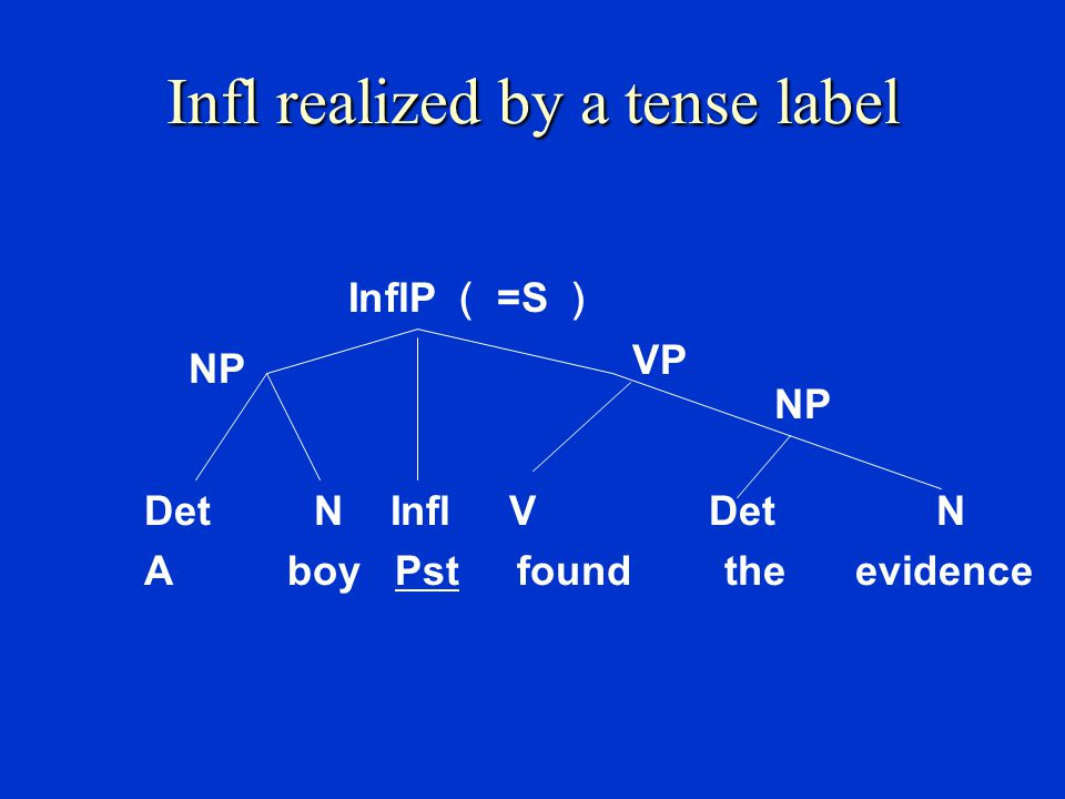 S  NP infl VP Many linguists believe that sentences, like other phrases, also have their own heads.
