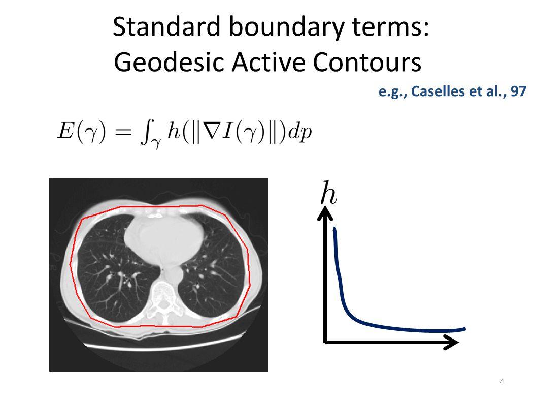 Standard boundary terms: Geodesic Active Contours 4 e.g., Caselles et al., 97