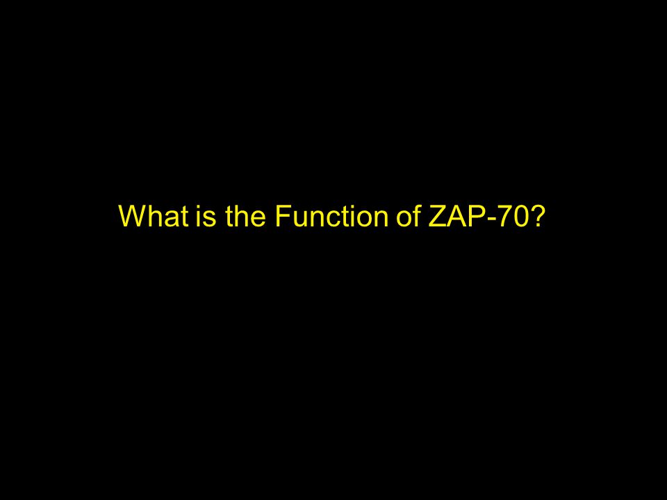 What is the Function of ZAP-70