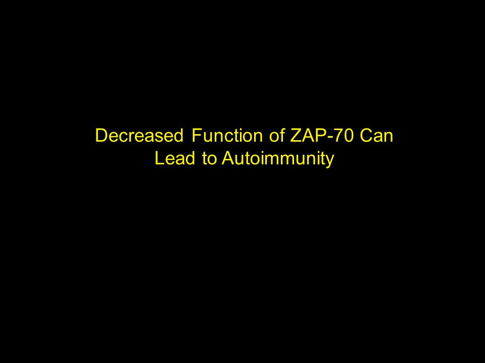Decreased Function of ZAP-70 Can Lead to Autoimmunity