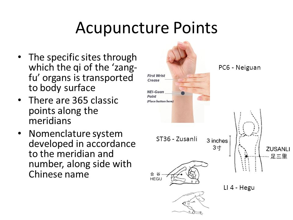 Acupuncture Points The specific sites through which the qi of the 'zang- fu' organs is transported to body surface There are 365 classic points along the meridians Nomenclature system developed in accordance to the meridian and number, along side with Chinese name PC6 - Neiguan ST36 - Zusanli LI 4 - Hegu