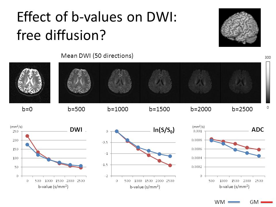 Effect of b-values on DWI: free diffusion? b=500b=1000b=1500b=2000b=2500 Mean DWI (50 directions) b=0 300 0 b-value (s/mm 2 ) (mm 2 /s) DWI ln(S/S 0 )