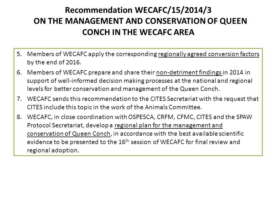 Recommendation WECAFC/15/2014/3 ON THE MANAGEMENT AND CONSERVATION OF QUEEN CONCH IN THE WECAFC AREA 5.Members of WECAFC apply the corresponding regio