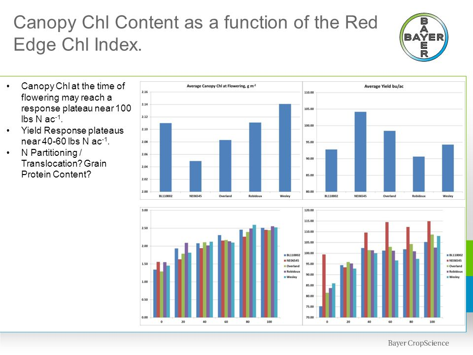 Canopy Chl Content as a function of the Red Edge Chl Index. Canopy Chl at the time of flowering may reach a response plateau near 100 lbs N ac -1. Yie