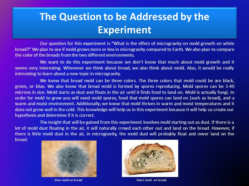Experiment Design The proposed experiment addresses our question by seeing if mold grows on the untouched bread in the FME tube in microgravity.