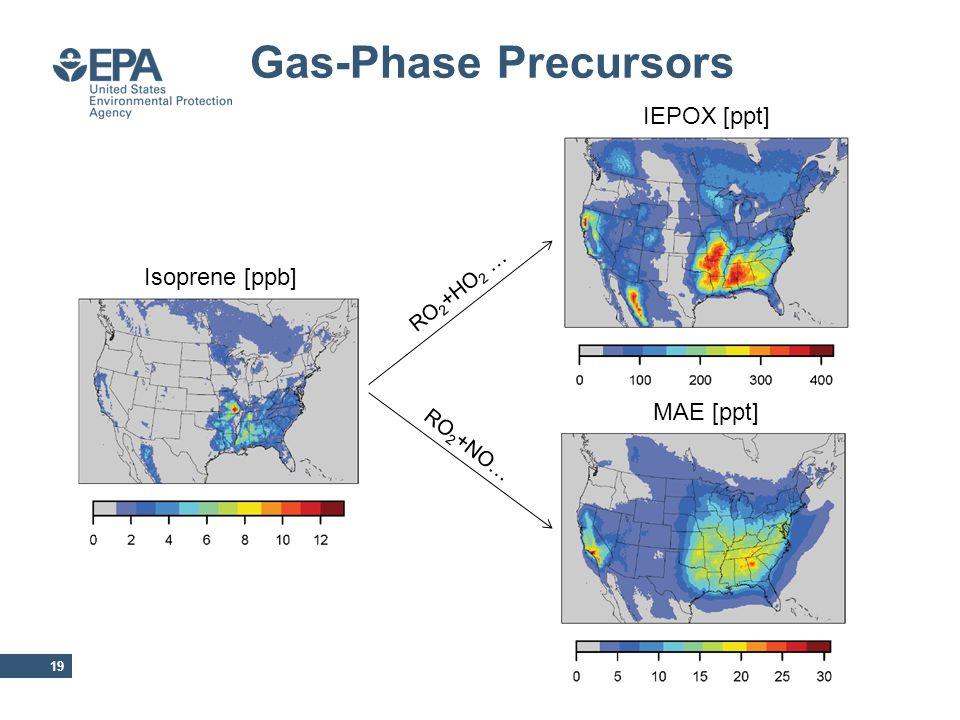 Gas-Phase Precursors 19 Isoprene [ppb] IEPOX [ppt] MAE [ppt] RO 2 +HO 2 … RO 2 +NO…