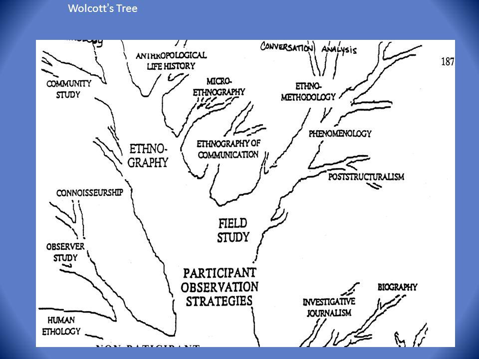 Wolcott ' s Tree