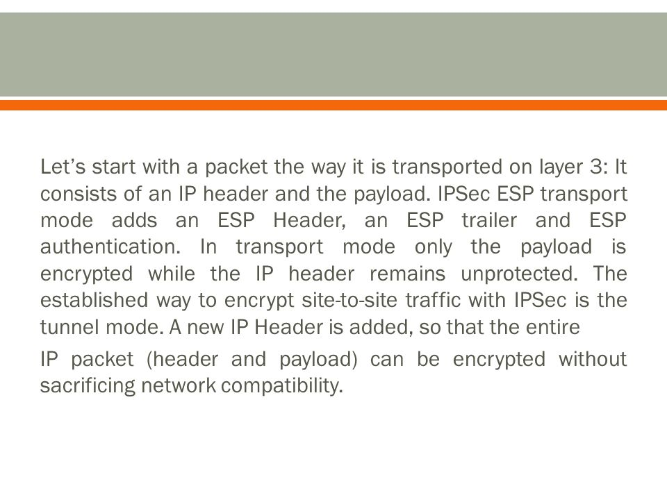 Let's start with a packet the way it is transported on layer 3: It consists of an IP header and the payload.