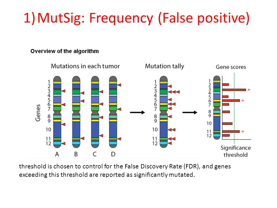 1)MutSig: Frequency (False positive) threshold is chosen to control for the False Discovery Rate (FDR), and genes exceeding this threshold are reported as significantly mutated.